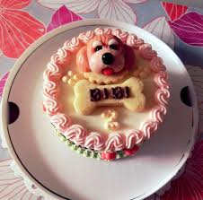 cute birthday cake for dog with dog face u0026 bone hi res 720p hd