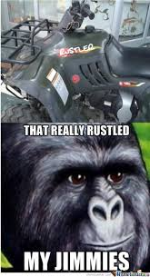Quad Memes - that quad bike rustled my jimmies by jordan dutoit meme center