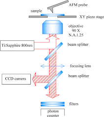 two photon luminescence imaging by scanning near field optical