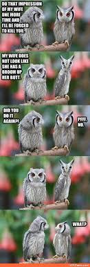 Owl Memes - funny owl memes impression of my wife loldamn com