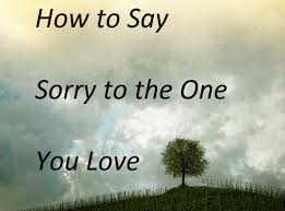 how to say sorry to the one you love pairedlife