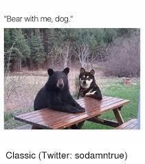 Funny Bear Meme - bear with me dog classic twitter sodamntrue dogs meme on sizzle