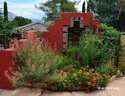 best 25 desert gardening ideas on pinterest garden ideas