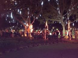 palm harbor christmas lights st petersburg the beach areas and most of pinellas county