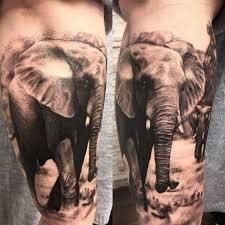 elephant tattoo designs best ideas u0026 meaning flowertattooideas com