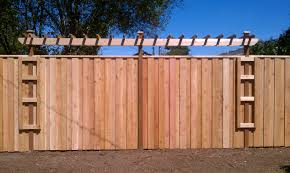 perfect ideas fence trellis beauteous decorative garden fencing