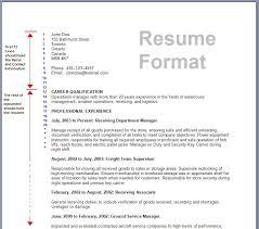 professional format resume resume format resume cv
