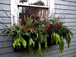 Plants For Winter Window Boxes - 1000 images about window box wonders on pinterest planters