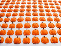 Small Pumpkins Best 25 Small Pumpkins Ideas On Pinterest Mums In Pumpkins