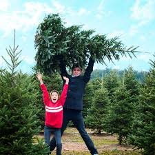 sat nov 25 christmas tree giveaway hashtag lewisburg wv