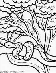 coloring picture printable snake coloring pages coloring me snake