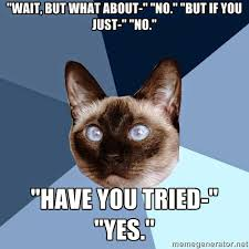 No Just No Meme - thursday 18 december 2014 meme images chronic illness cat