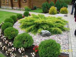 Landscaping Ideas For Small Gardens 998 Best Small Yard Landscaping Images On Pinterest Landscaping