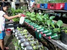 recycled container vegetable garden in this amazing home made