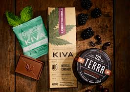 high expectations 21 cannabis brands to watch high times