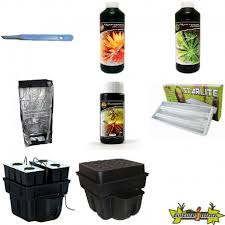 pack chambre de culture pack chambre de culture plantes meres boutures eco 4 cis products