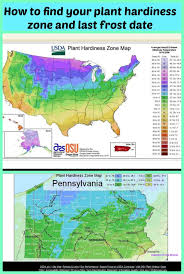 Us Zones For Gardening - usda zone map cleveland seed co in the zone statebystate