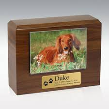 dog urns memorials funeral and cremation archive