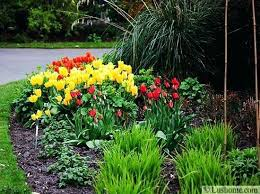 spring landscaping flower landscape ideas macky co