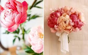 peonies flower delivery peonies flowers delivery uk flowers ideas