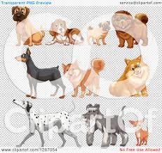 pug x boxer dog clipart of mastiff or boxer beagle pug chow chow doberman