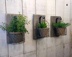 the 25 best wall herb gardens ideas on pinterest vertical herb