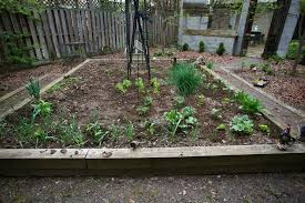 how to diy planting vegetable garden ideas home design ideas