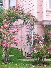 home design home decor bedroom home flowers pink interior design