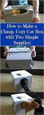 Make A Cheap End Table by Best 25 Diy Cat Bed Ideas On Pinterest Cat Beds Cat Scratching