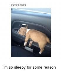 I M So Tired Meme - current mood i m so sleepy for some reason mood meme on me me