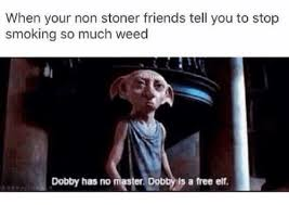 Stop Smoking Memes - when your non stoner friends tell you to stop smoking so much weed