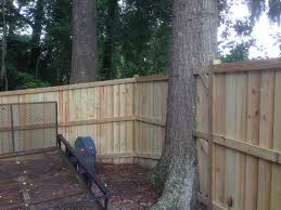 fence around tree google search landscaping pinterest
