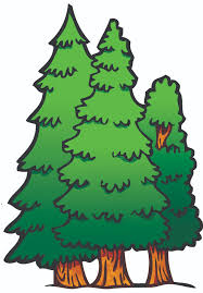pictures of trees images free download clip art free clip art
