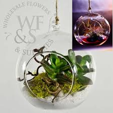 hanging glass terrarium globe votive holder large wholesale