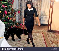first lady michelle obama walks bo in the state dining room of the