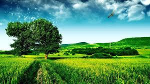 beautiful green landscape 6966702