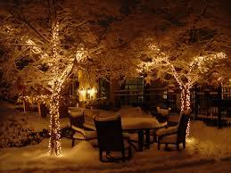 garden solar outdoor lighting trees beautiful backyard led