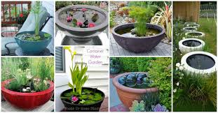 Container Water Garden Fountain Tips To Build Great Container Water Garden Interior Decorating