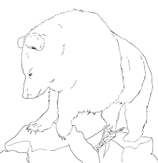 black bear coloring page printable coloring pages 4147