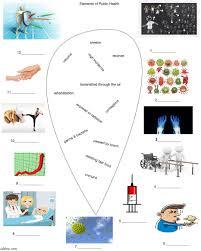 wellness worksheets pdf spirit weekly wellness plan downloadable