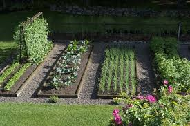 Backyard Vegetable Garden Ideas 40 Vegetable Garden Design Ideas What You Need To Know
