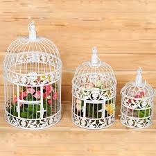 best 25 cheap bird cages ideas on mini greenhouse