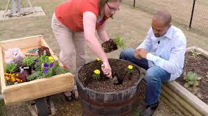 planting a container flower garden family plot youtube