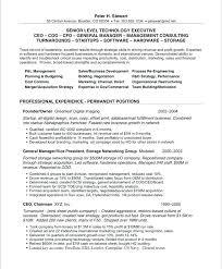 Computer Programmer Resume Objective Sample Resume Computer Programmer Resume Resume Example Computer