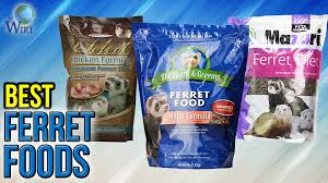 8 best ferret foods 2017 youtube