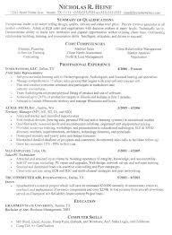 example it resume summary resume examples it professional nardellidesign com