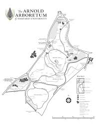 Boston University Map by News Trevor Edwards Garden Design