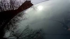 trees reflected in car window windshield reflection car driving