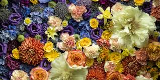 how to reuse old cut flowers according to an ethical flower company