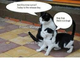Project Management Meme - 25 best memes about project manager project manager memes